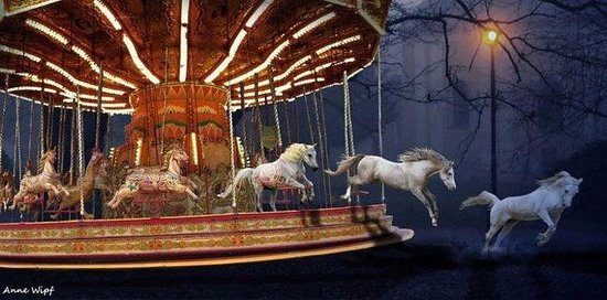 Medina, MN: Carousel horses, jumping horses and a little magic...