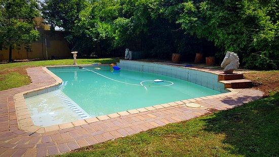 Pool - Picture of Horse's Neck Guest Lodge, Johannesburg - Tripadvisor