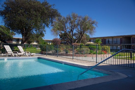 Hotel outdoor pool  Outdoor Pool BBQ Picnic Area nestled in our Garden Courtyard ...
