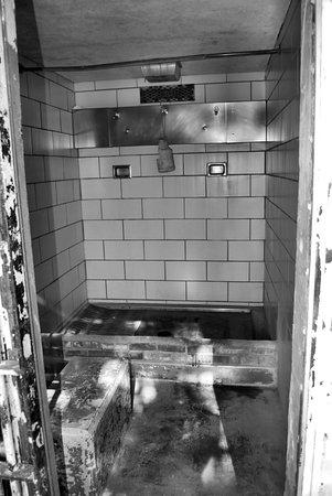 Jefferson City, MO: shower