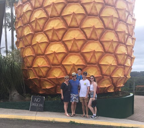 The Big Pineapple : photo0.jpg