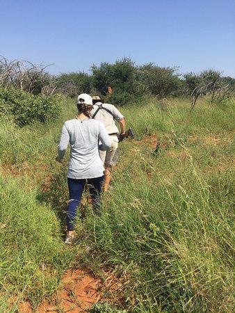 Madikwe Hills Private Game Lodge: walking safari