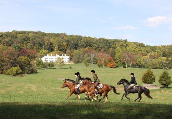 Leesburg, VA: Hunter pace in front of Morven Park mansion