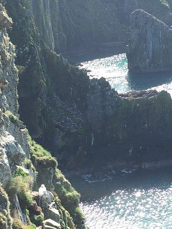 Old Head of Kinsale : Voyage au sud ouest du conté de Cork