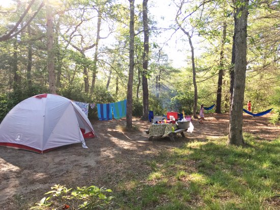 Nickerson State Park Campgrounds: Our Spacious Campsite