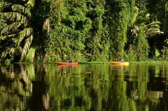 Naranjo, Costa Rica: Best way to explore the Tortuguero canals.