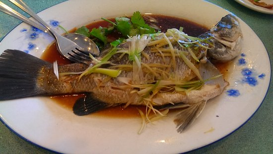 Clayton, Australia: Steamed Whole Barramundi