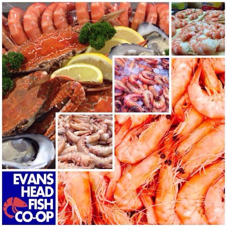 BEAUTIFUL EVANS HEAD PRAWNS