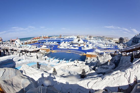 Ras Al Khaimah Ice Land Water Park...