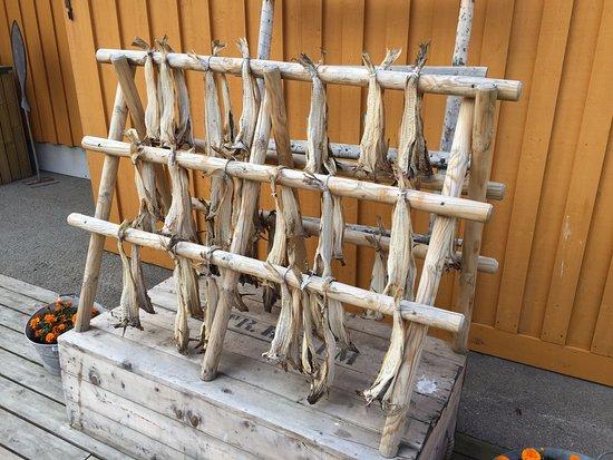 Reine, Norwegia: 魚乾架