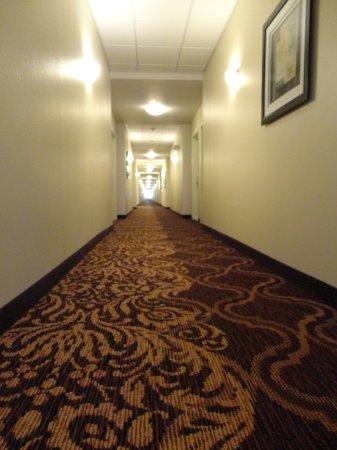 Mascoutah, IL: Hallway