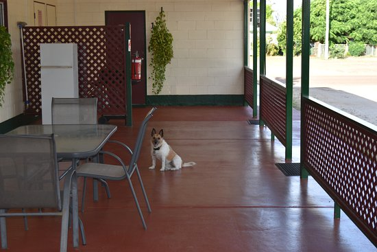 Karumba, Australia: pet friendly