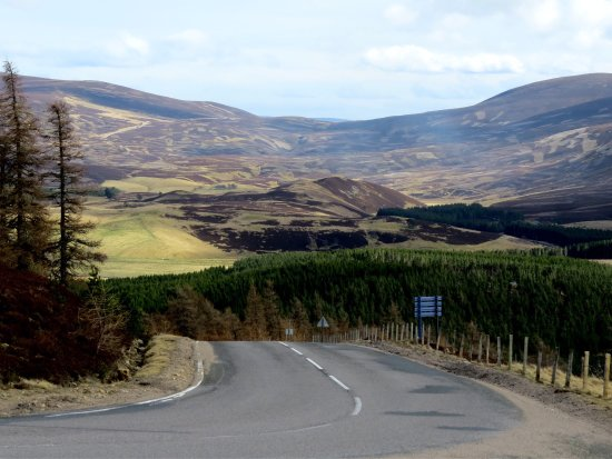 Aviemore and the Cairngorms, UK: photo1.jpg