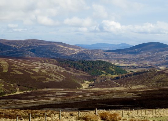 Aviemore and the Cairngorms, UK: photo2.jpg