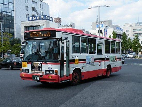 Ichibata Bus