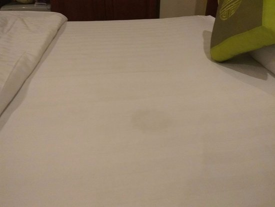 Saigon Europe Hotel: Spots on the bed3