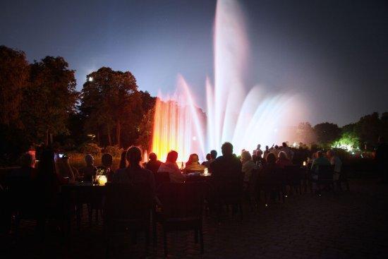 Die Wasserlichtspiele Am Abend Bild Von Cafe Seepavillon Hamburg