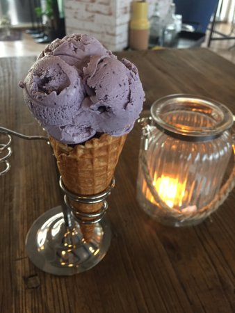 Seltjarnarnes, Iceland: Bluberry gelato Icecream ... lactose free of course :)