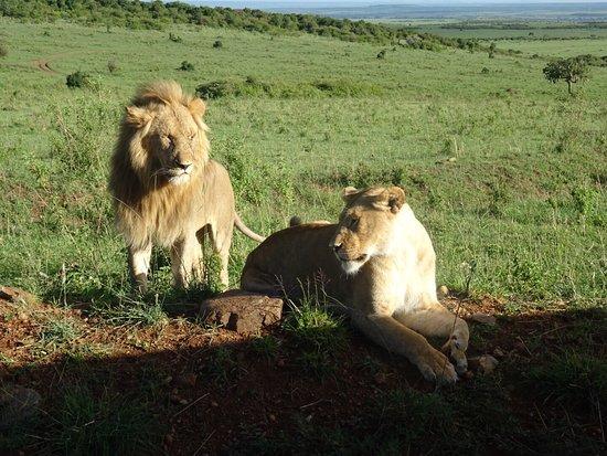 F. King Tours and Safaris - Day Tours: photo0.jpg