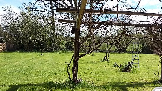Videix, Francia: Private garden of The Gite