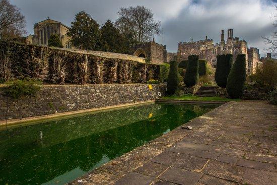 Berkeley Castle: The Lily pond