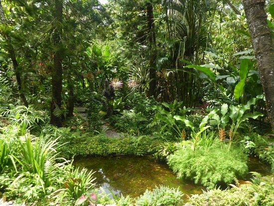 Diamond Botanical Gardens: a lovely interior