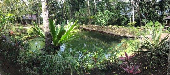 Loboc Ecotourism Adventure Park: photo4.jpg