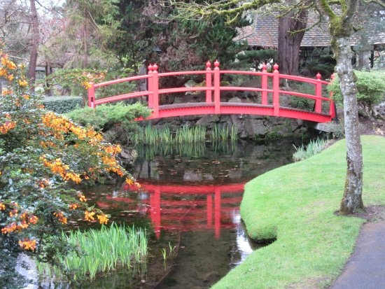 Irish National Stud & Gardens: Chinese Red