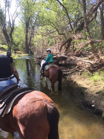 Malibu Riders Inc: never rode a horse through a creek before--very cool!