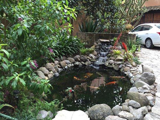 Guayaba Inn Photo