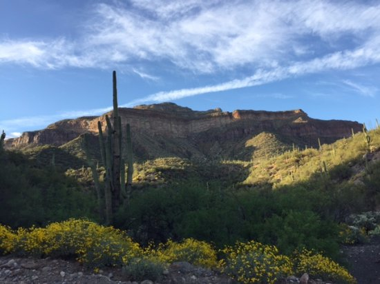 Winkelman, AZ: Views from Aravaipa Farms Orchard and Inn