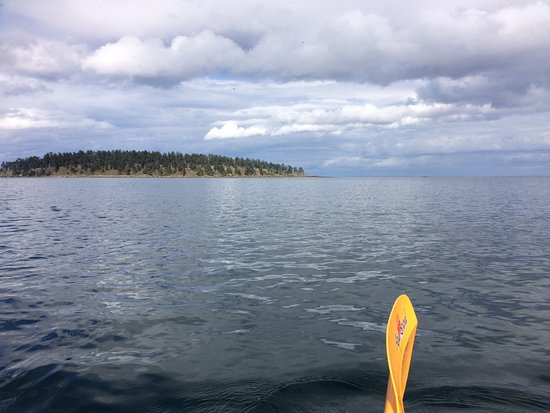 Kayaking Gulf Islands Photo