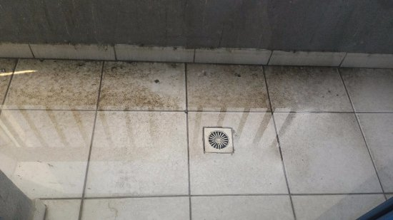 Fortune Hotel Apartments : Dirty balcony, never cleaned during 7 day stay!