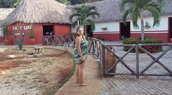 Yucatan, Messico: FB_IMG_1491410889346_large.jpg