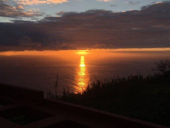 Madeira Native Motion: photo3.jpg