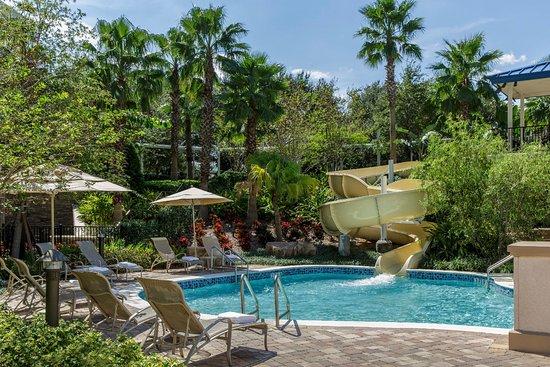 Hyatt regency orlando updated 2018 hotel reviews price for Pool show orlando 2015