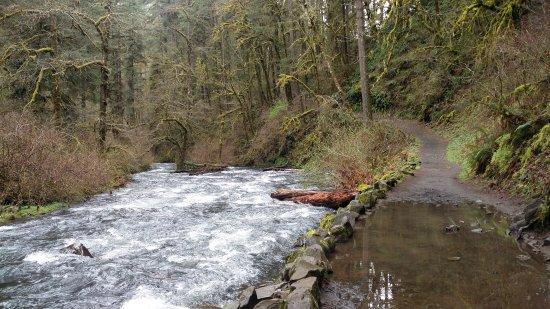 Sublimity, Oregon: IMG_20170328_112014_large.jpg