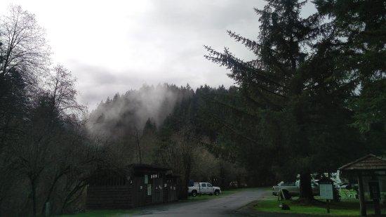 Sublimity, Oregon: IMG_20170328_100155_large.jpg