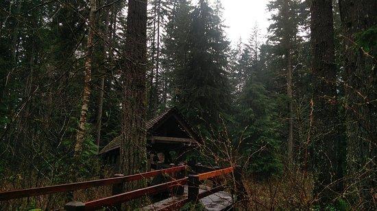 Sublimity, Oregon: IMG_20170327_182721_large.jpg
