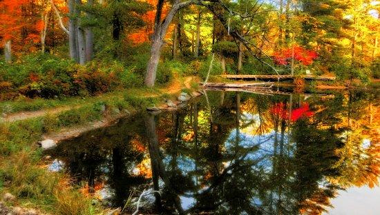 Pleasant Valley Sanctuary: October foliage