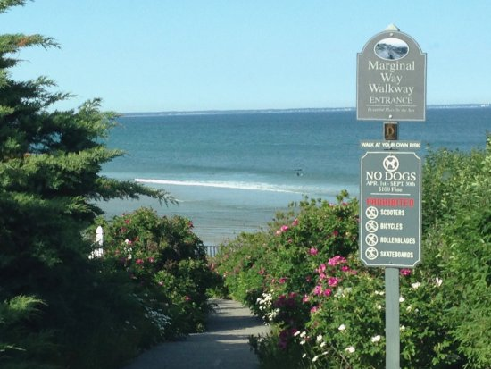 view of one section of the marginal way ogunquit maine picture