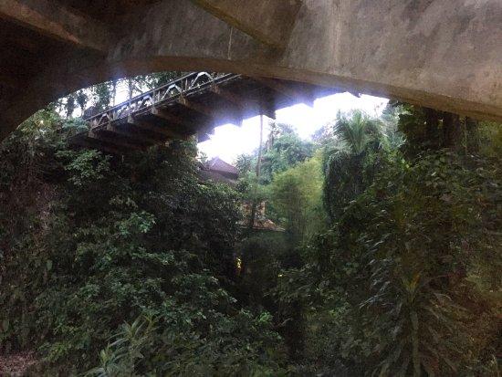 bridges Bali: Bar View