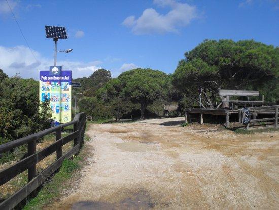 Praia da Coelha : Weg naar