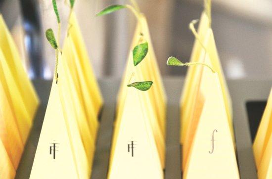 Saint-Nexans, France: Sélection de thés