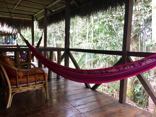 Siona Lodge: photo0.jpg