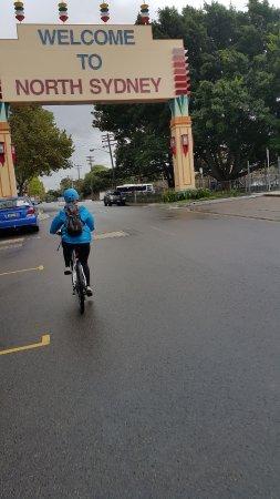 BlueBananas Electric Bike Tours: North Sydney
