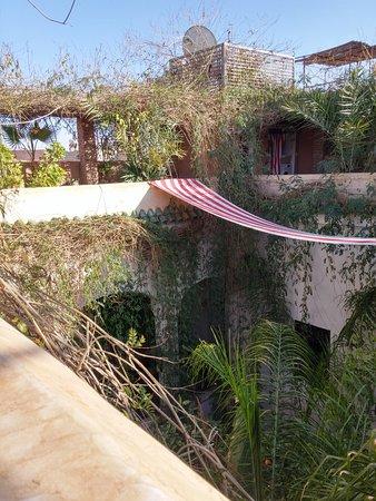 Riad Tibibt: Vue de la terrasse du riad