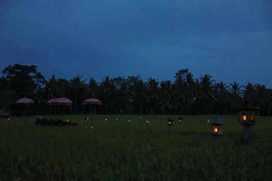 The Chedi Club Tanah Gajah, Ubud, Bali – a GHM hotel: Perfection... from morning til night!!
