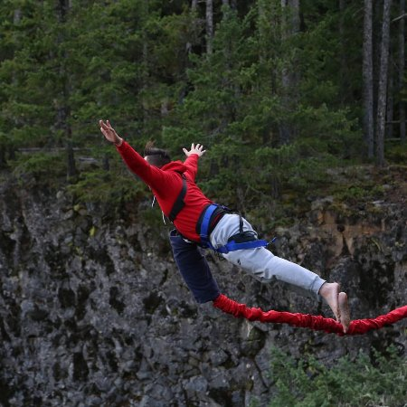 Whistler Bungee: Perfect 10.0. #topphoto