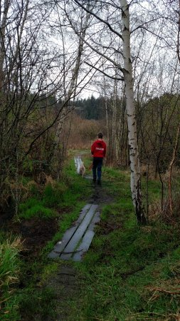 Camano Island, WA: Trail past the beach